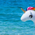 Unicorn Swim Tube
